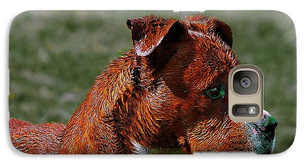 Galaxy Case featuring the photograph A Dog by John  Kolenberg