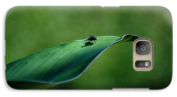 Galaxy Case featuring the photograph A Fly And His Shadow by Thomas Woolworth
