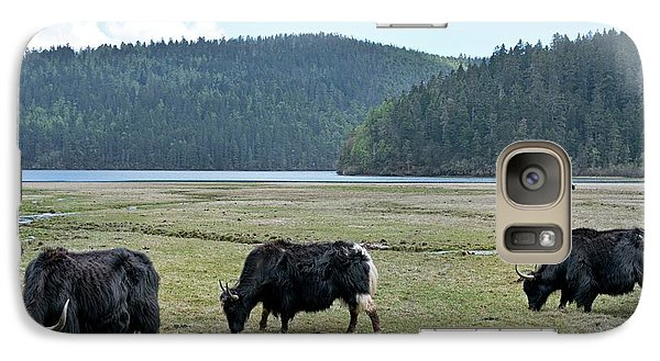 A Herd Of Yaks In Potatso National Park Galaxy S7 Case by Tony Camacho
