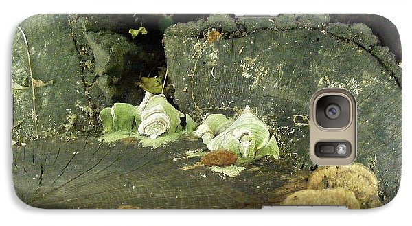 Galaxy Case featuring the photograph A Lichen Family  by Nancy Kane Chapman