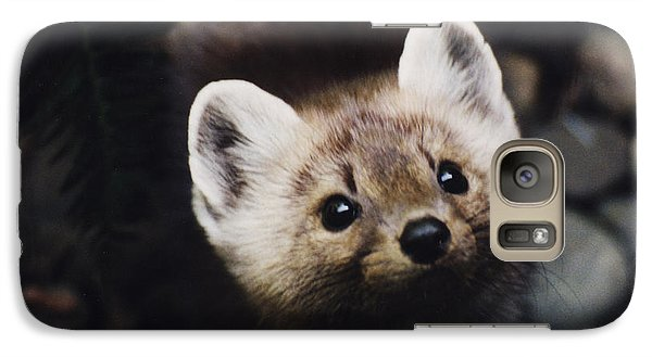 Galaxy Case featuring the photograph A Little Martin Looking Up At Me. by Myrna Walsh