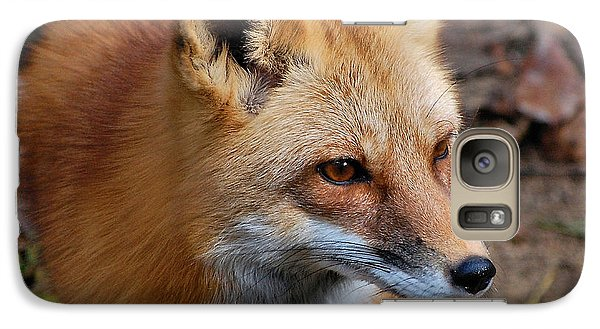 Galaxy Case featuring the photograph A Little Red Fox by Kathy Baccari