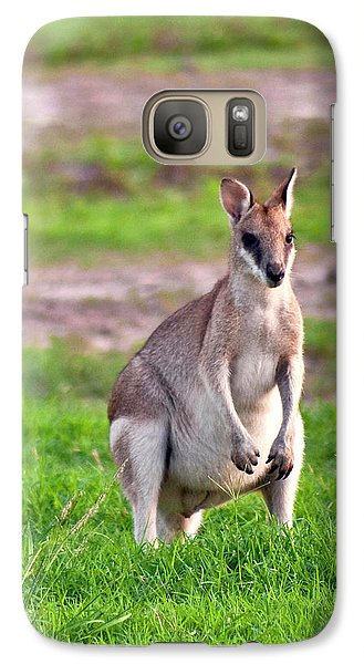 A Male Grey Kangaroos (macropus Galaxy Case by Miva Stock