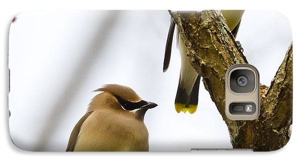 A Pair Of Cedar Waxwings Galaxy S7 Case by Ricky L Jones