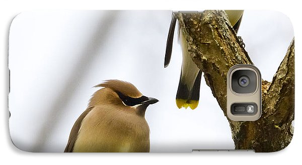 Galaxy S7 Case featuring the photograph A Pair Of Cedar Waxwings by Ricky L Jones