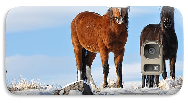Galaxy Case featuring the photograph A Pair Of Wild Mustangs In Snow by Vinnie Oakes