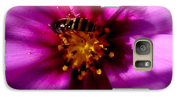 Galaxy Case featuring the photograph A Pink Delight by Frank Wickham