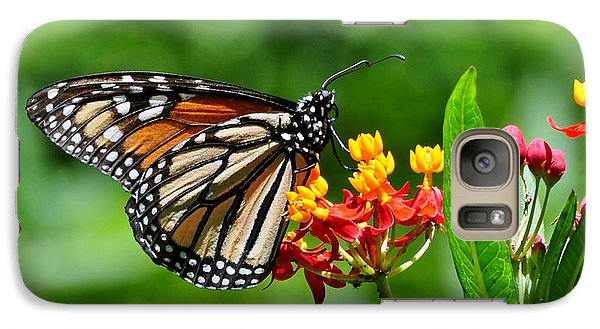 Galaxy Case featuring the photograph A Place To Settle Down by Kathy Baccari