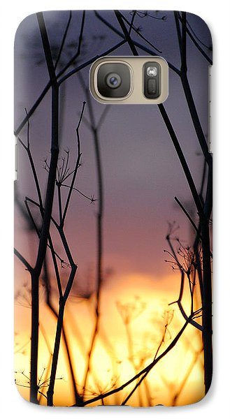 Galaxy Case featuring the photograph A Queen's Sunset by Jani Freimann
