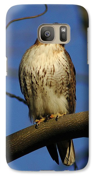 Galaxy Case featuring the photograph A Red Tail Hawk by Raymond Salani III