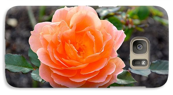 Galaxy Case featuring the photograph A Rose  by Alex King