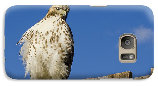 Galaxy Case featuring the photograph A Rough Legged Hawk On The Hunt by MaryJane Armstrong