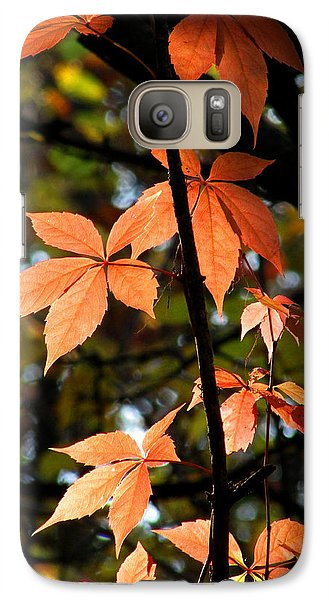 Galaxy Case featuring the photograph A Strand Of Leaves I by Kimberly Mackowski