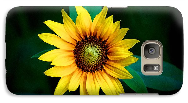 Galaxy Case featuring the photograph A Sunflower Named Stella by Gwyn Newcombe