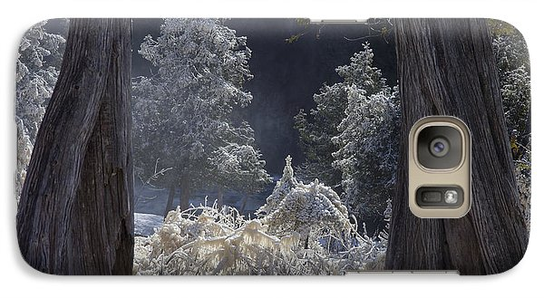Galaxy Case featuring the photograph A Twisted Fairy Tale by Mary Amerman
