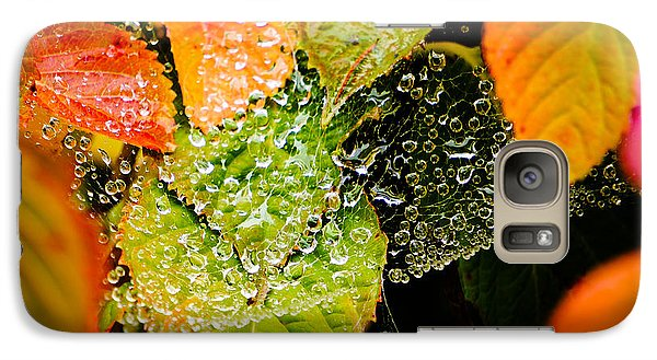Galaxy Case featuring the photograph A Web Of Rain by Ronda Broatch