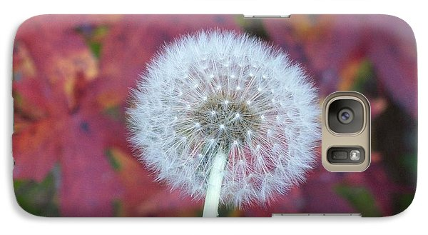 Galaxy Case featuring the photograph A Wish For You by Robin Coaker