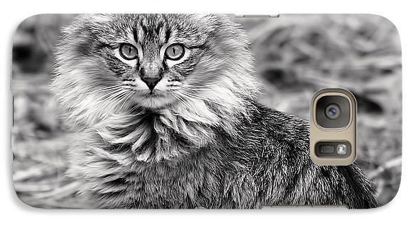 Galaxy Case featuring the photograph A Young Maine Coon by Rona Black