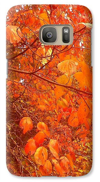 Galaxy Case featuring the photograph Ablaze by Elizabeth Carr