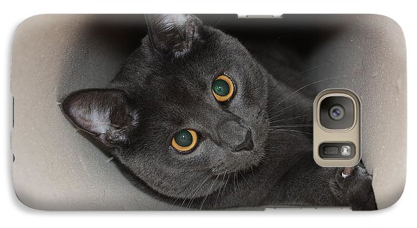 Galaxy Case featuring the photograph Oh Hai by Rachel Hames