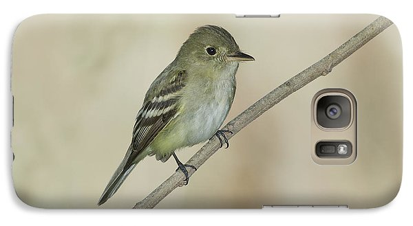 Acadian Flycatcher Galaxy S7 Case by Anthony Mercieca