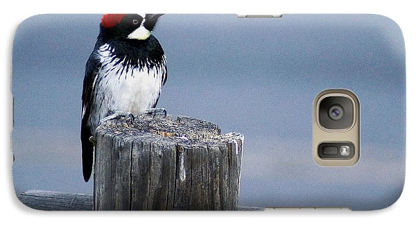 Galaxy Case featuring the photograph Acorn Woodpecker by Gary Brandes