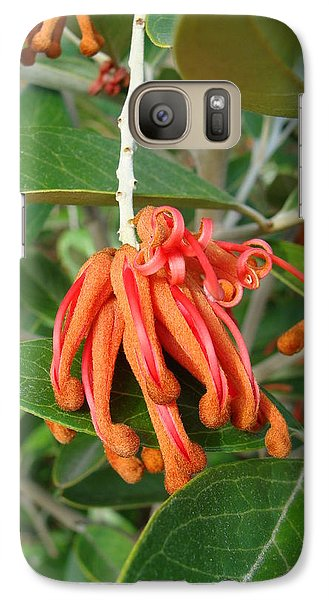 Galaxy Case featuring the photograph Adaptable Exotic by Cheryl Hoyle