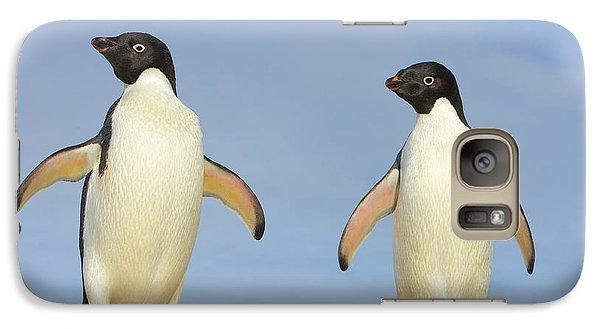 Adelie Penguin Duo Galaxy S7 Case by Yva Momatiuk John Eastcott