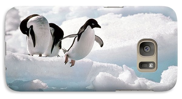 Adelie Penguins Galaxy S7 Case by Art Wolfe