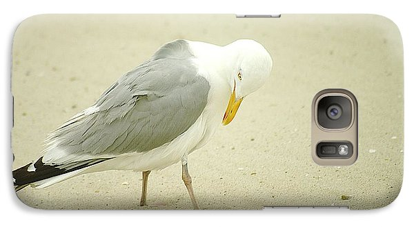Galaxy Case featuring the photograph Adult Seagull Preening by Suzanne Powers