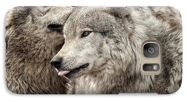 Galaxy Case featuring the photograph Adult Timber Wolf by Wolves Only