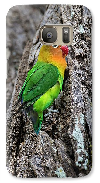Africa Tanzania Fischer's Lovebird Galaxy S7 Case