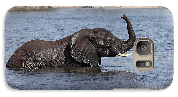 Galaxy Case featuring the photograph African Elephant In Chobe River  by Liz Leyden
