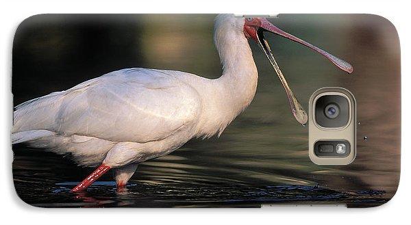 African Spoonbill Galaxy S7 Case