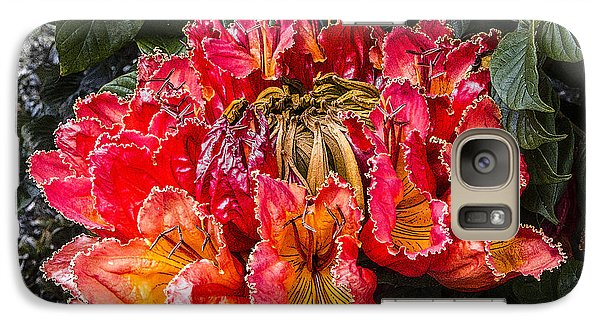 Galaxy Case featuring the digital art African Tulip Tree Flowers by Photographic Art by Russel Ray Photos