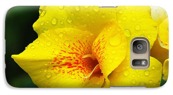 Galaxy Case featuring the photograph After A Summer Shower by Linda Segerson
