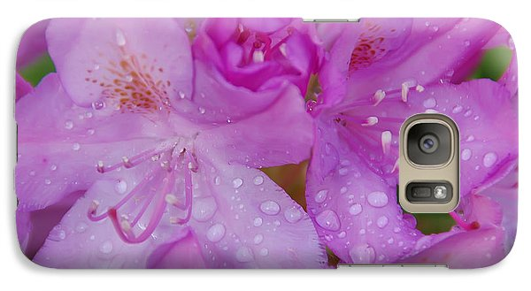 Galaxy Case featuring the photograph After The Rain by Aimee L Maher Photography and Art Visit ALMGallerydotcom