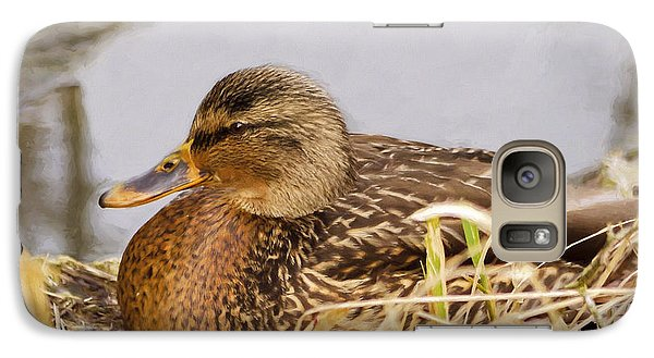 Galaxy Case featuring the photograph Afternoon Siesta by Jordan Blackstone