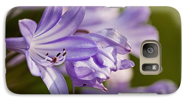 Galaxy Case featuring the photograph Agapanthus by Liz  Alderdice