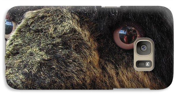 Galaxy Case featuring the photograph Alaskan Bear by Jennifer Wheatley Wolf