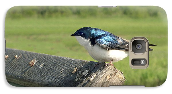 Galaxy Case featuring the photograph Alaskan Swallow by Dan Redmon