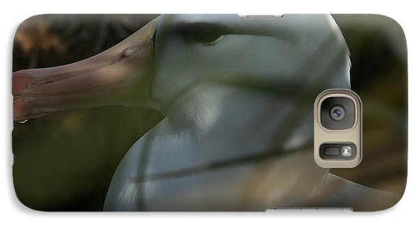 Galaxy Case featuring the photograph Albatross by Amanda Stadther