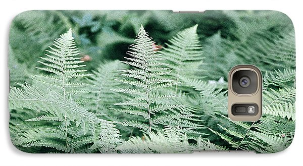 Galaxy Case featuring the photograph Algonquin Ferns by David Porteus