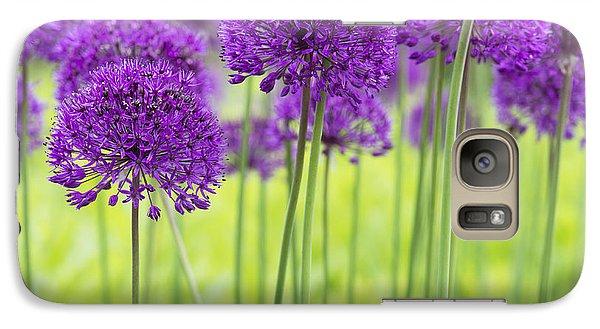 Allium Hollandicum Purple Sensation Flowers Galaxy S7 Case
