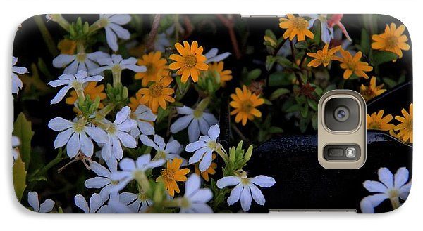Galaxy Case featuring the photograph Alpine Beauties by Frank Wickham