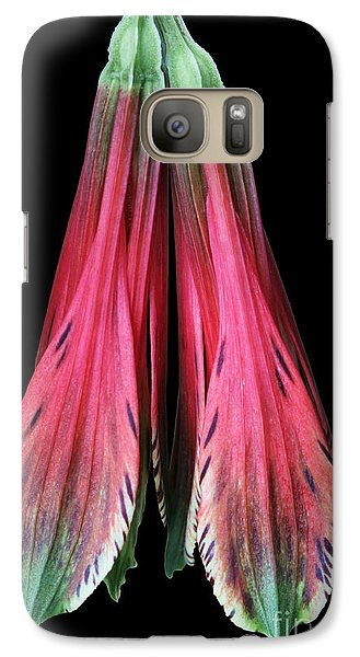 Galaxy Case featuring the photograph Alstroemeria by Judy Whitton