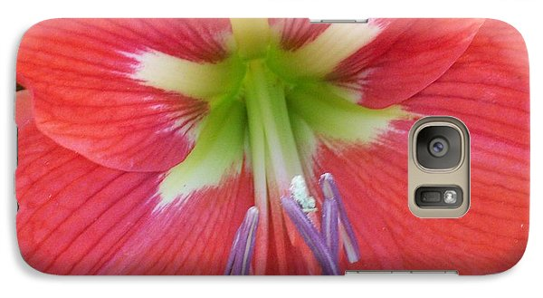 Galaxy Case featuring the photograph Amarylis by Belinda Lee