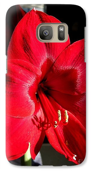Galaxy Case featuring the photograph Amaryllis Named Black Pearl by J McCombie