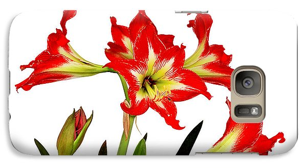 Galaxy Case featuring the photograph Amaryllis On White by David Perry Lawrence