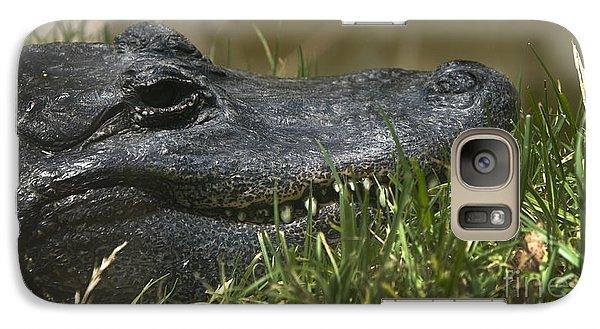 Galaxy Case featuring the photograph American Alligator Closeup by David Millenheft